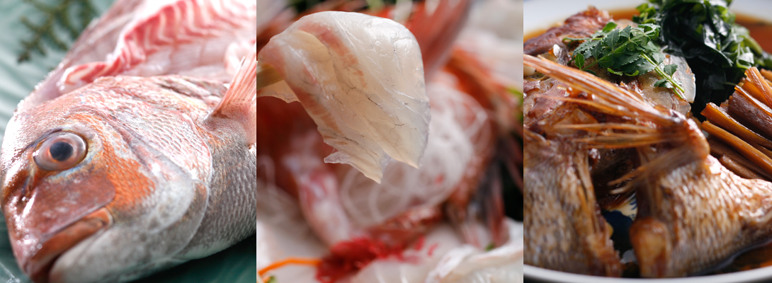 活造り・うす造り盛り・あら煮 鯛の三変化